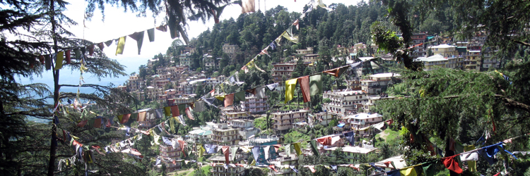 Indien Nord 10 Tage Privatreise A (Wunschtermin)